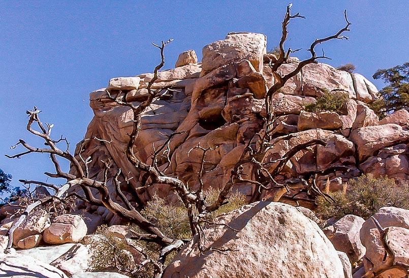 Joshua Tree Rock formations