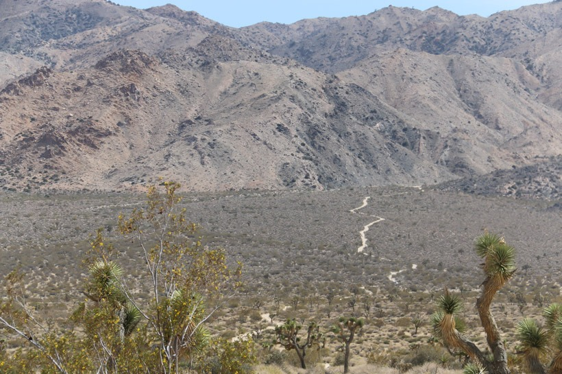 Backcountry view:  Geology Tour Road