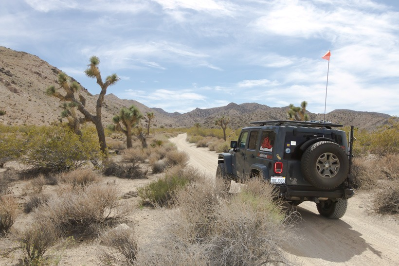 Joshua Tree National Forest: Start of Geology Tour road East