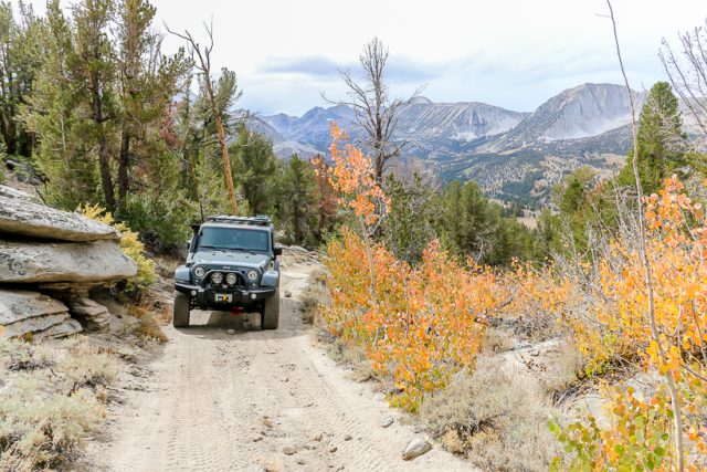 heading up trail wheeler ridge
