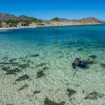 Clear water in Baja Duanne-1
